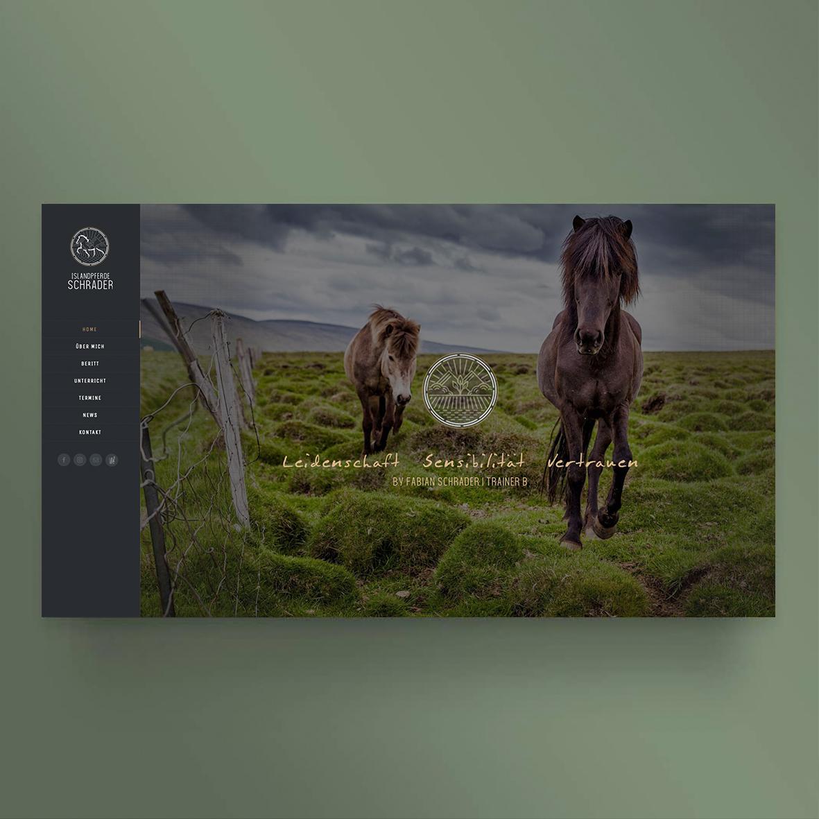 Islandpferde-Schrader-instagram-8