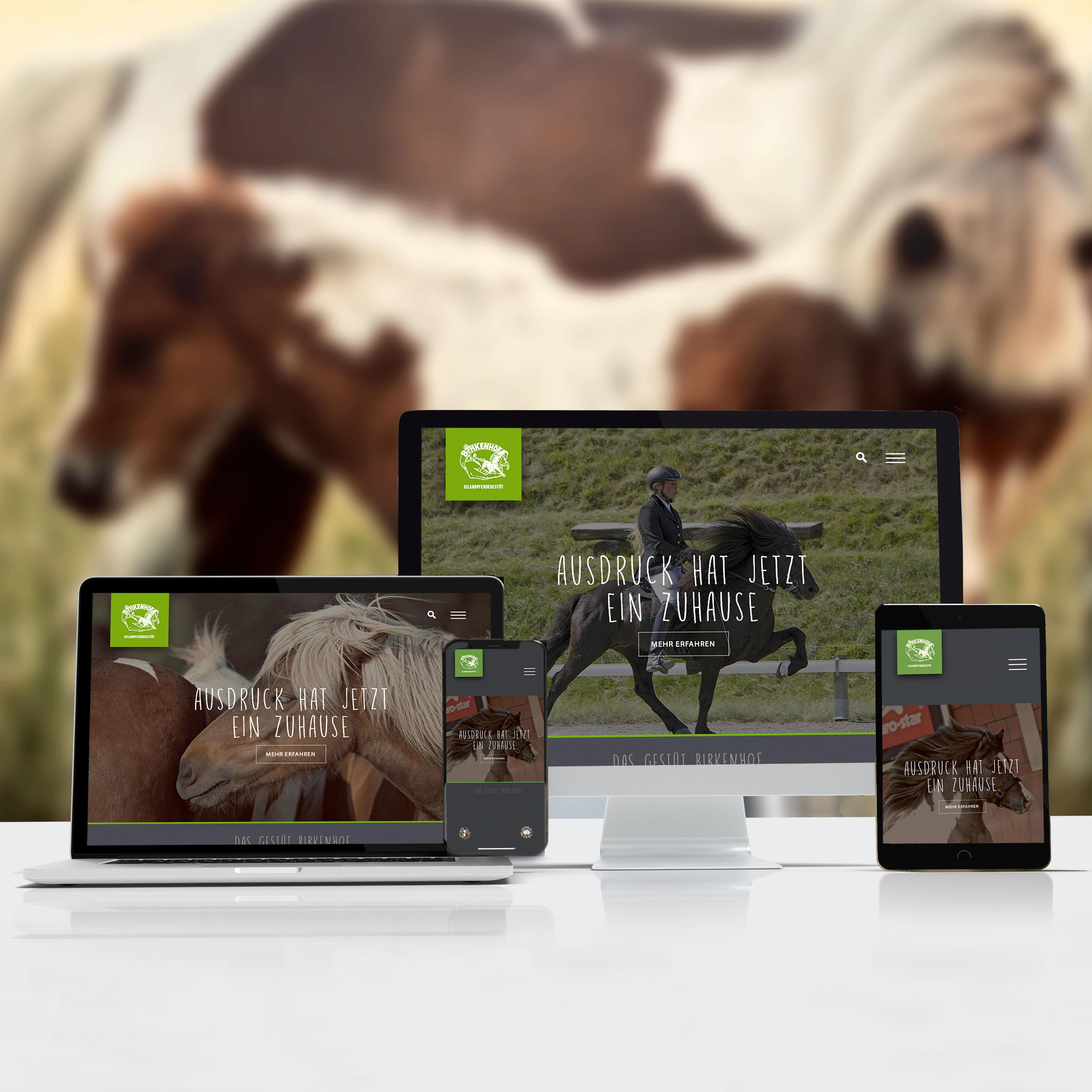website-Dummy-Birkenhof-gesamt-2